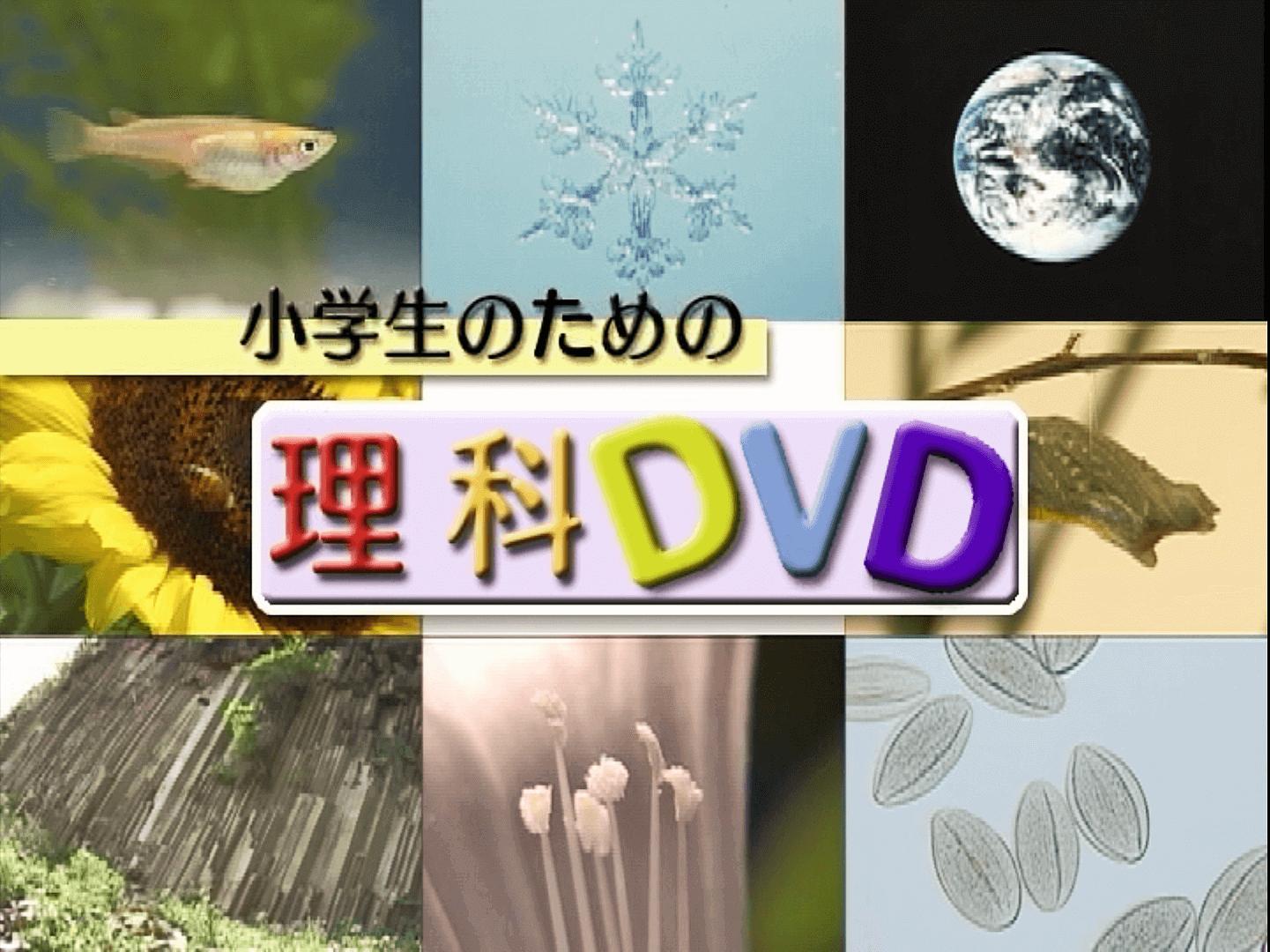理科DVD